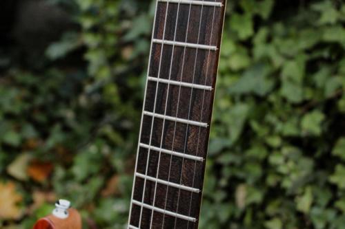 08 Fingerboard Detail