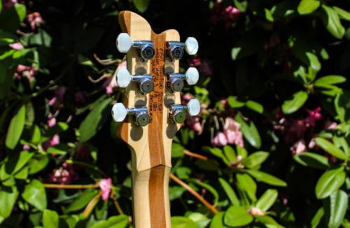 08 Headstock Rear Detail