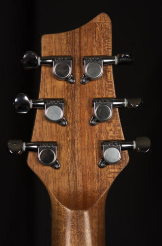 09 Headstock Back