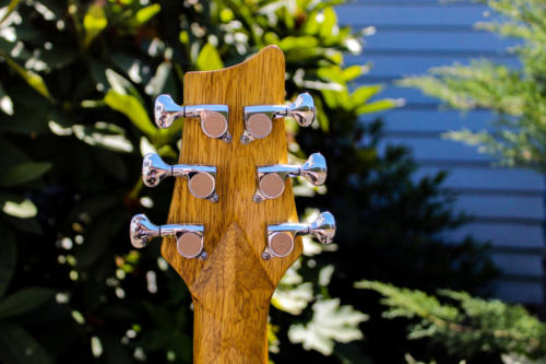 11-Headstock-Back