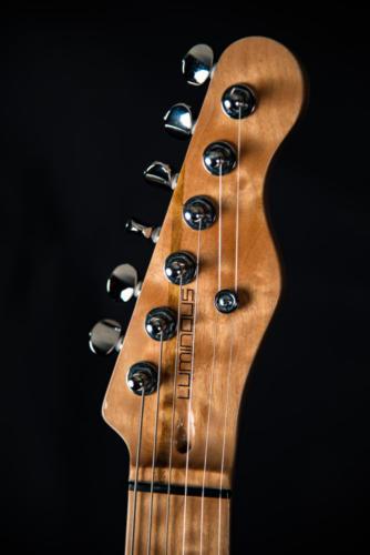 luminous guitars-centerline-33