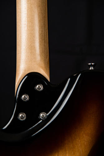 luminous guitars-centerline-49